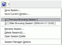 Images Previews Session Manager-1