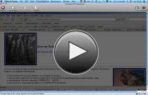 Vmware Fusion Paused Windows Xp