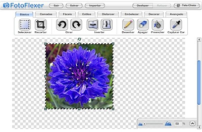 fotoflexer basic editor
