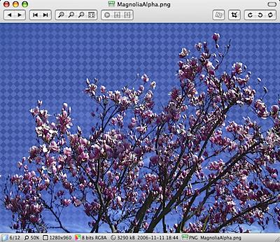 xee mac screenshot