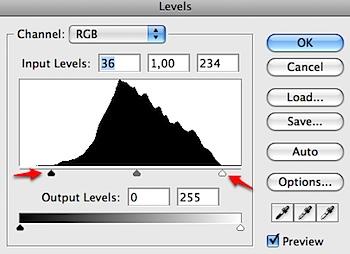photoshop cs2 Levels adjustment
