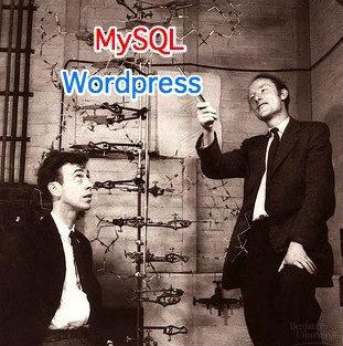 nerd geek mysql wordpress